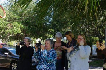 Hands on cameras in the Garden surrounding the Sarasota Art Center